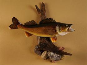 Fish Replica Mounts at Fibertech